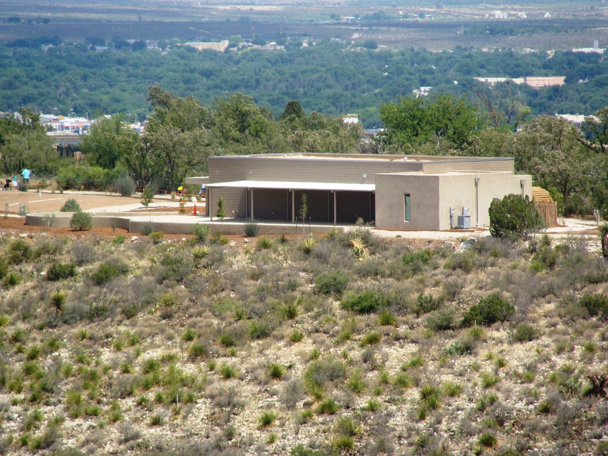 Reptile Exhibit At Living Desert Zoo Gardens State Park Aic Albuquerque General Contractors